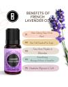 Best Lavender Oil-BrownBoi